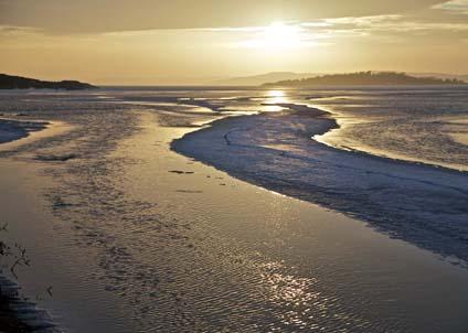 Havsisen har glatt många inbitna vinterfiskare – och den kan också vara till stor nytta för havet. (Foto: Anders Nicander)