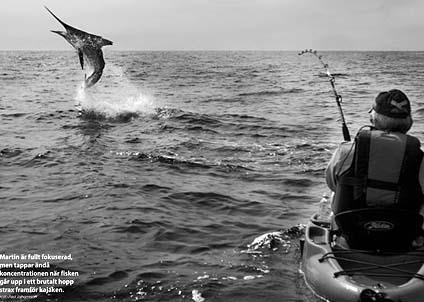 Bilder av världsklass illustrerar den fantastiska historien om marlinfångst från kajak. (Foto: Pasi Johansson)