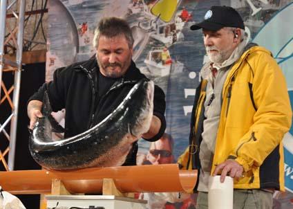 Frank Yde har aldrig förr fångat en lax – men väger här in dagens största på Bornholm. (Foto: tv2bornholm)