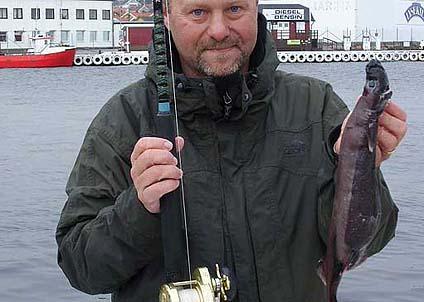 Den lilla hajen vägde 815 gram och innebar att Benny Johansson noterades för ett nytt svenskt rekord. (Foto: Storfiskregistreringen)