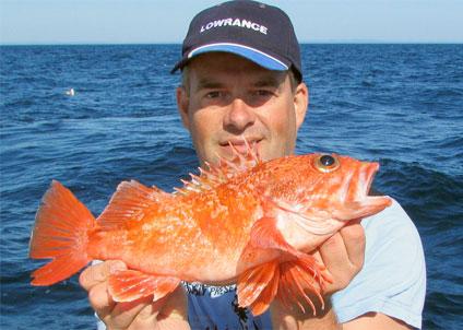 svenskt rekord fisk