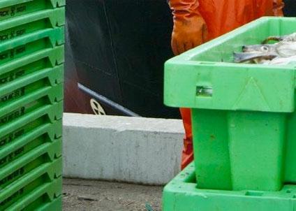 nya regler för fiskimport