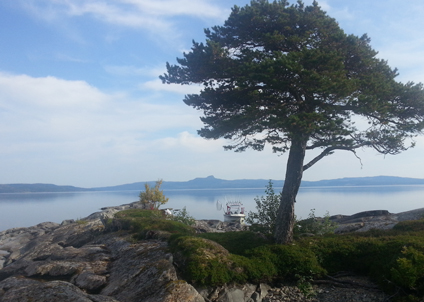 I den jämtländska Kallsjön finns både öring, röding och kanadaröding.
