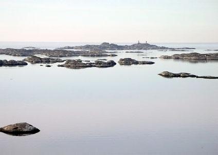 HaV klar med vägledning för när och hur fiske ska regleras i skyddade havsområden