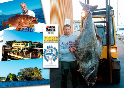 Juryn kunde inte motstå Fredrik von Elerns hälleflundra på över 100 kilo. Nu åker han snart till Panama.