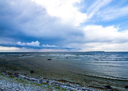 Östersjöns döda bottnar - lika illa som överfisket