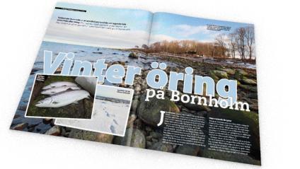 I senaste Fiskejournalen hittar en lockande artikel om öringfiske vid Bornholm.