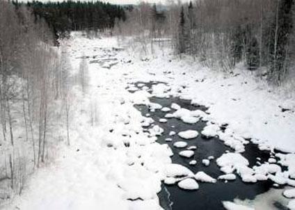 Fortum har vid vid minst sex tillfällen tappat för lite vatten från ett kraftverk i Ljungan.