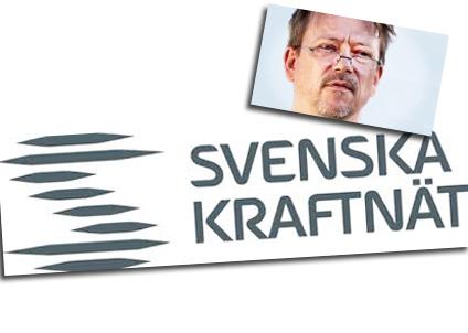 Älvräddarna ifrågasätter om Svenska kraftnät har förstått sitt uppdrag.