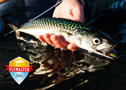 Fångsten dokumenteras med bild på fisken och flugan som fångat den. Sajten är mobilanpassad så det går att skicka in registrerade fångster direkt via telefonen.