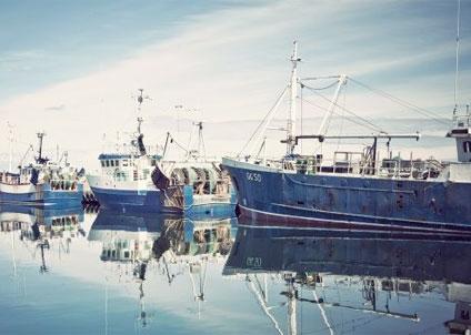Kvoten för torsk i Nordsjön och Skagerrak höjdes med fem procent mot bakgrund av rådgivning från ICES.