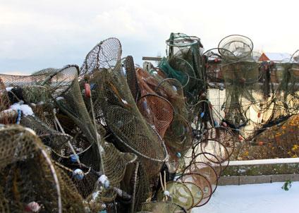 HaV har för 2014 valt att ge ett särskilt uppdrag till Sveriges Lantbruksuniversitet, SLU att skapa ett sekretariat för selektivt fiske. (Copyright Judith Doyle/Creative Commons Attribution ShareAlike 3.0 License)
