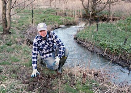 Biologen Dan Calderon planterar alträd längs en havsöringsbäck. (Foto: Stefanie Kräher)