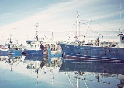 Fiskeflottans kapacitet regleras nationellt och det finns väl utarbetade metoder för att långsiktigt anpassa flottans storlek.