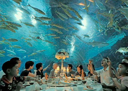 Fisk till middag – eller middag åt fisken. Man får hoppas att glaset håller!