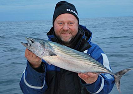 Bonito fångad i svenska vatten, en av drygt 30 000 fiskar i registret. (Foto: Storfiskregistret)
