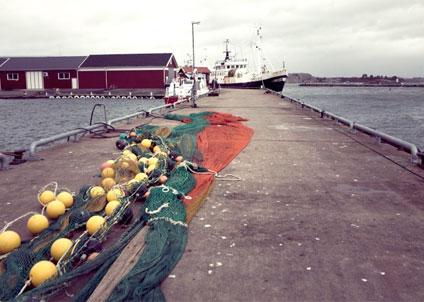 En verksamhet i form av yrkesfiske som går med förlust år efter år, kommer i fortsättningen att bedömas som hobby.