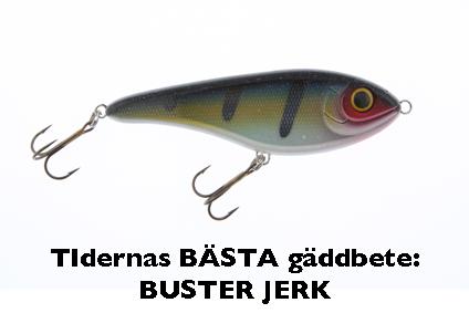 basta_gadda_1