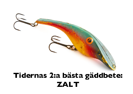 basta_gadda_2