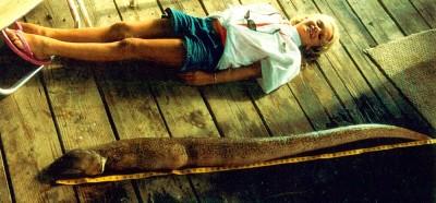 En Stippled spoon-nosed eel på 7484 gram. Världsrekordhållaren Taylor Ashley Walker ligger bredvid. BILD: IGFA