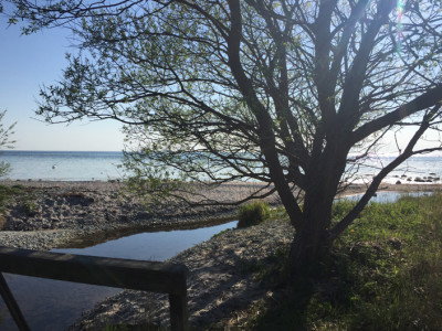 Trot eller ej, men Snuder å är en av öns större åar. Vid vårt besök 10-12 maj var vattnet bara någon decimeter djupt vid mynningen.